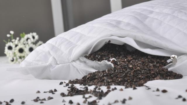 沃尔玛买枕头,竟买回一个虫窝