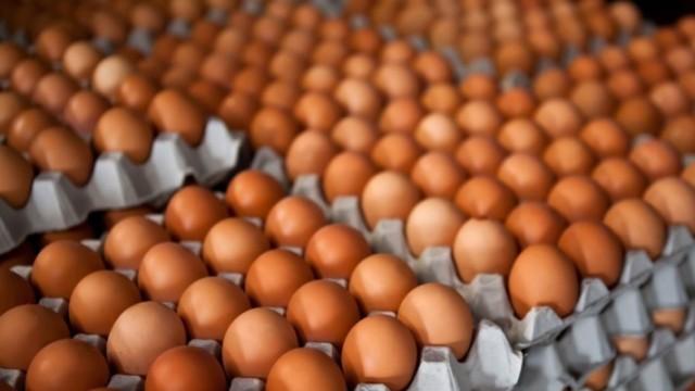 禽流感肆虐,韩国爆买330万个鸡蛋