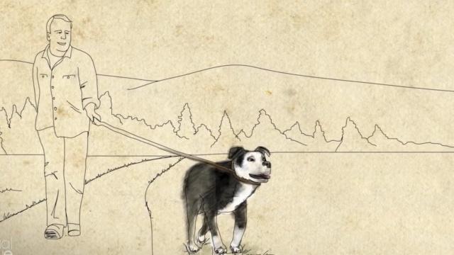 一人一狗在最窘迫时帮彼此完成救赎