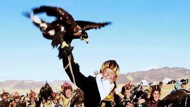 15岁蒙古小女孩打破成见成为猎鹰人