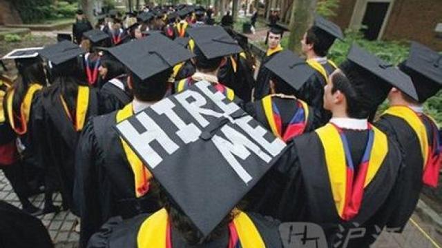 花数百万留学找数千元工作,值不值?