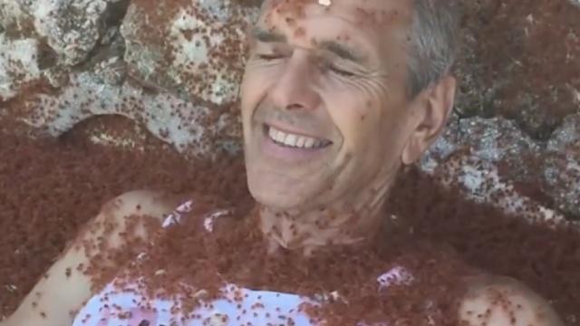 重口螃蟹浴,你敢尝试吗?
