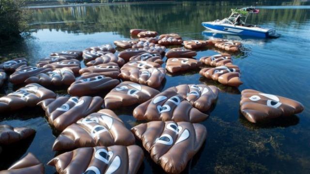 为抗议新政,50只大便表情惊现湖中