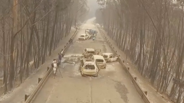葡萄牙中部森林大火: 62死59伤