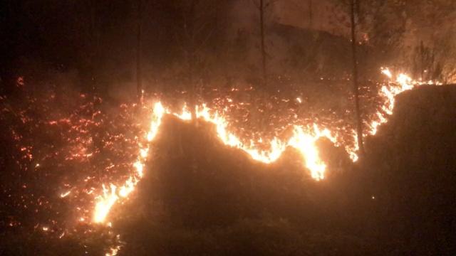 实拍葡萄牙森林大火,已致63人丧生