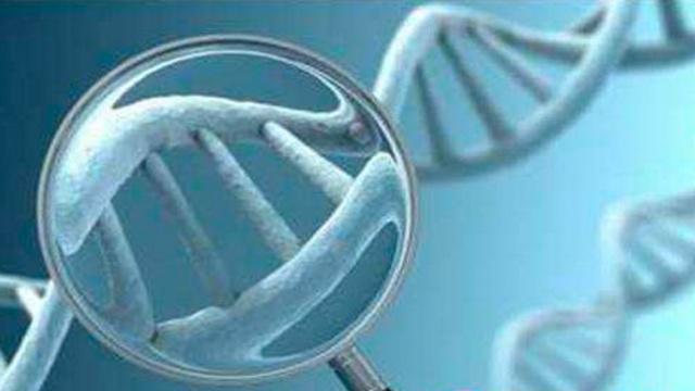基因检测有多神?专家:相当于算命