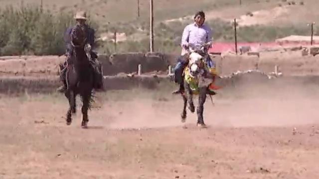 甘肃村民扬鞭赛马,沸腾山野草场