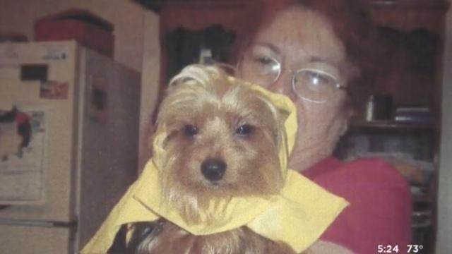 失去丈夫后,她宠物狗的骨灰又遭窃