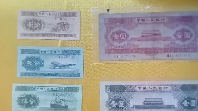 """男子""""藏钱""""20年,收古币建博物馆"""