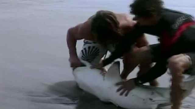 惊险!小伙钓到鲨鱼,不料被咬住手