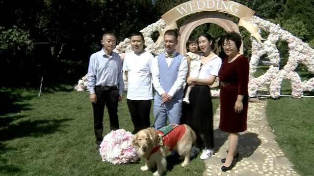 导盲犬当他眼睛10年,他结婚它退役