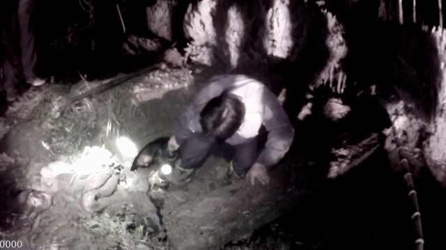 老汉筑堤排水钻进涵洞抓鱼,堤塌了