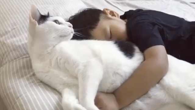 暖!猫咪想起床,却舍不得吵醒小主人