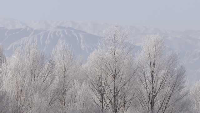 雾凇驾临青海贵德,黄河摇身变天镜