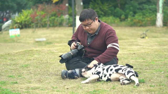 萌!宠物摄影师这样和它们打交道