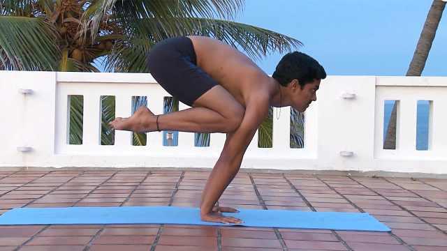 印度古式瑜伽教学:鹤禅式