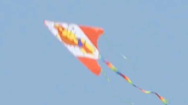 男孩放风筝,风筝线刮伤4辆车
