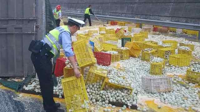 万斤鸭蛋侧翻碎一地,蛋液铺满高速