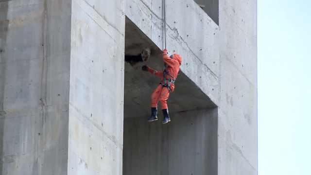 蜜蜂桥墩筑巢伤人,消防60m高空火攻
