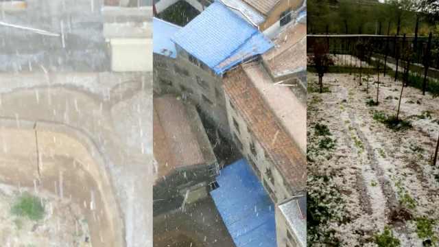 冰雹突袭甘肃,农户遭殃:菜白种了