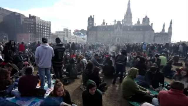加拿大新法案:娱乐大麻将合法化
