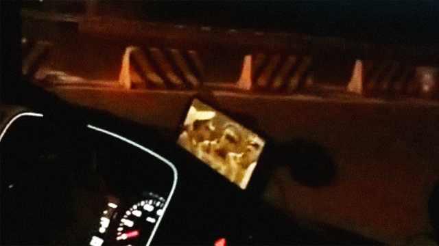 司机边开车边看剧,民警惊呼
