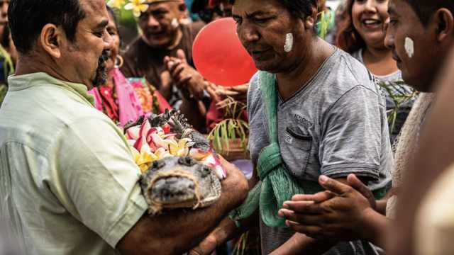 为祈求丰收,墨西哥市长娶了条鳄鱼