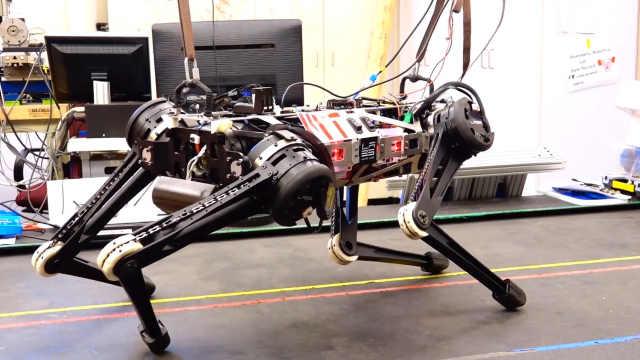 MIT研发盲眼机器人,眼睛长在脚上