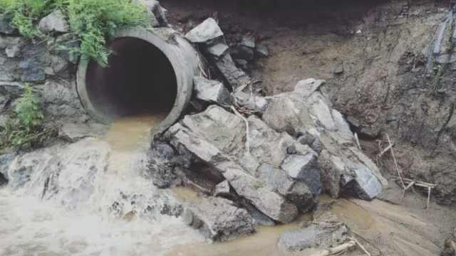 吉林暴雨成河,20万段木耳被冲走