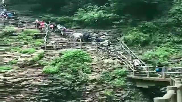 台湾学生镜头记录河南行