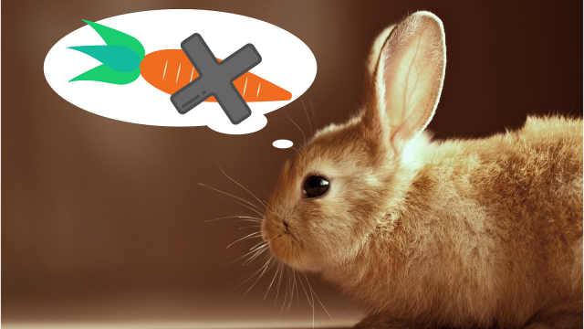 其实兔子并没有那么爱吃胡萝卜?