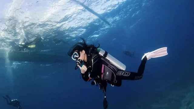 90后美女专职潜水:看见鲨鱼很兴奋