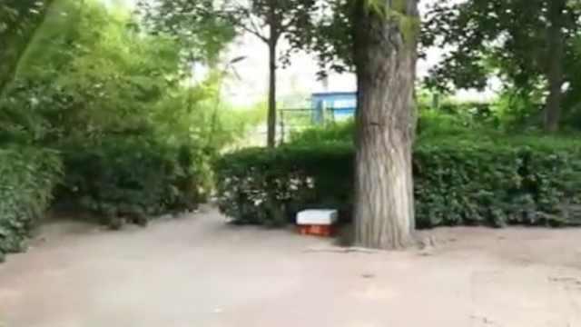 一盒骨灰被弃公园,大爷怒斥:不合适