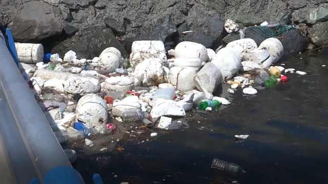塑料污染有多严重?已大量进入人体