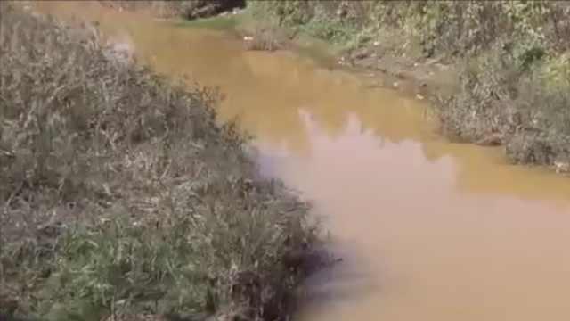 村里河水变红,环保部门:非工业污染