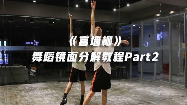 《宫墙柳》舞蹈镜面分解教程part2