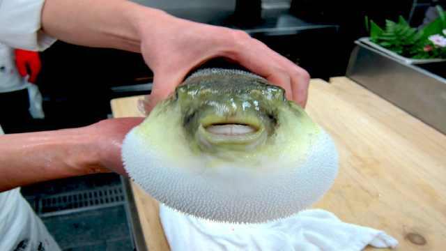 最难料理的鱼是什么鱼?