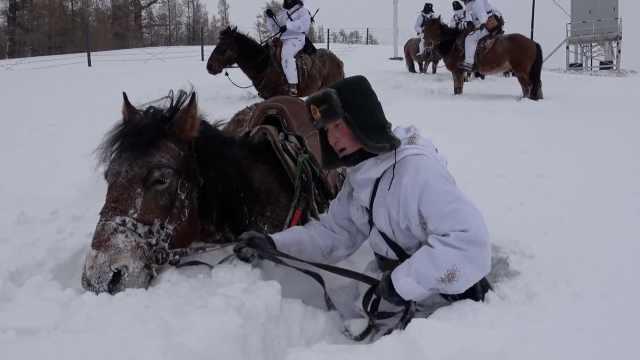 雪厚两米!边防战士巡逻马都被埋