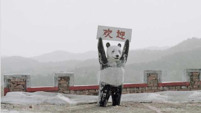 直播:冰雪中的熊猫,讲述南北差异