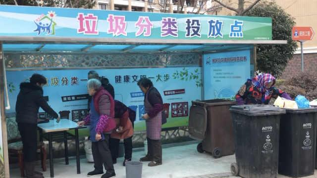 上海这个区的垃圾分类已经出神入化