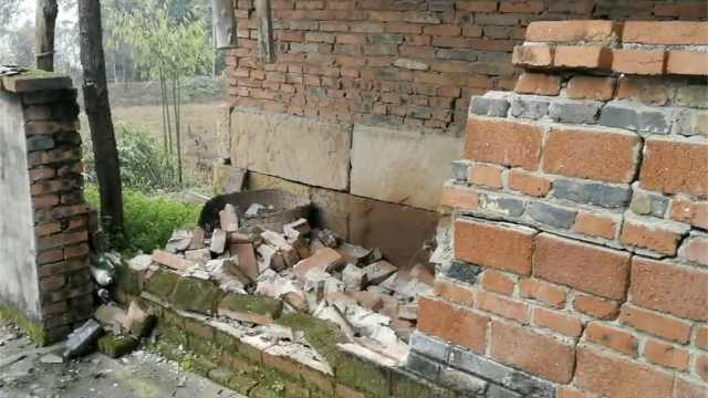 自贡4.7级地震,专家:属于构造地震