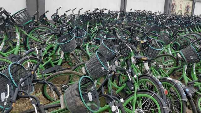共享电单车堆满绿化带,延绵数百米
