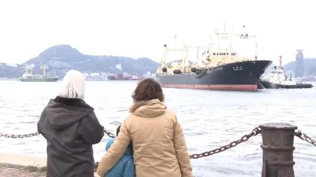 日本从南极捕回333头鲸鱼,不再去