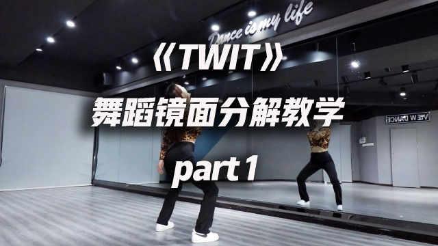 华莎《TWIT》舞蹈镜面分解教学p1