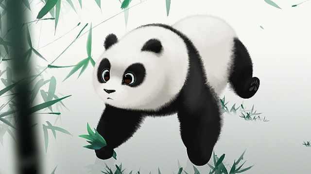国产的熊猫电影,能超越功夫熊猫吗