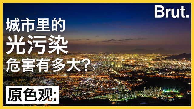 城市光污染,对自然环境有何影响?