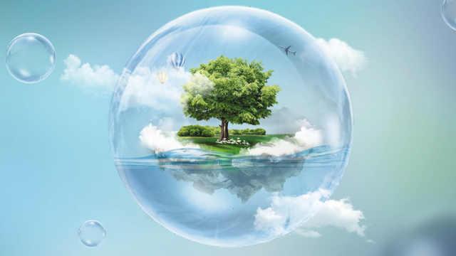 """3年""""手机种树""""实现碳减排792万吨"""