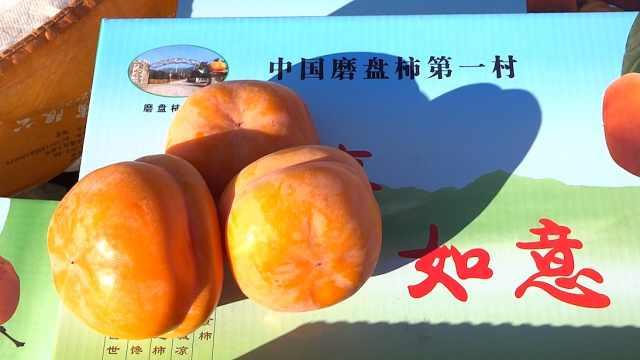 磨盘柿——近600年历史的宫廷贡品