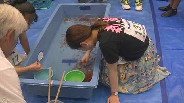 牛!日本女高中生靠捞金鱼考上大学