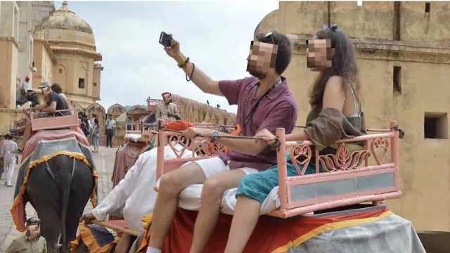 直播:被骑要表演!关注印度大象悲剧